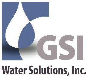 GSI logo