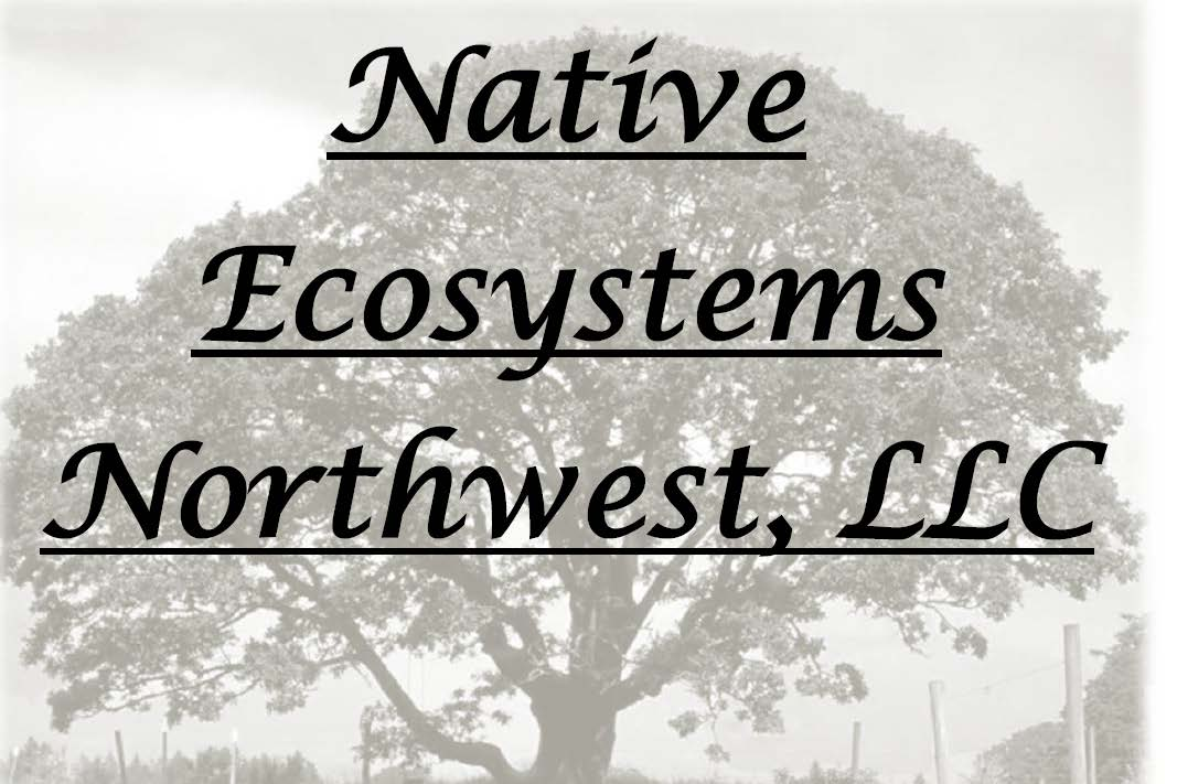 Native Ecosystems Northwest, Water Environment Services logo